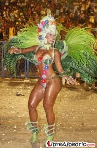 2013 carnaval rio